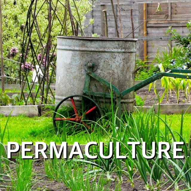 FOOD Permaculture header2