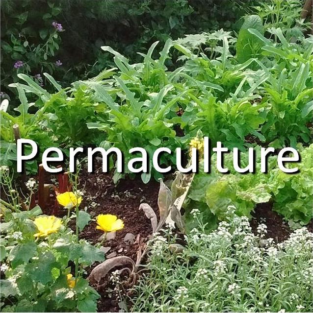 Permaculture tile