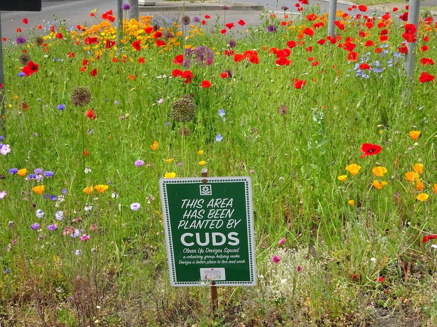 CUDS roundabout